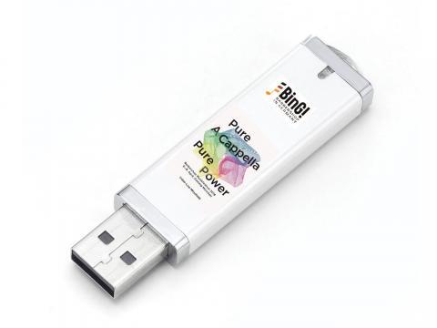 USB-Stick BMF 2018